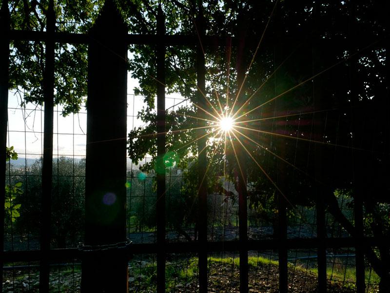 Leica 12 mm @f/13 - Jpeg diretto Lumix GX880